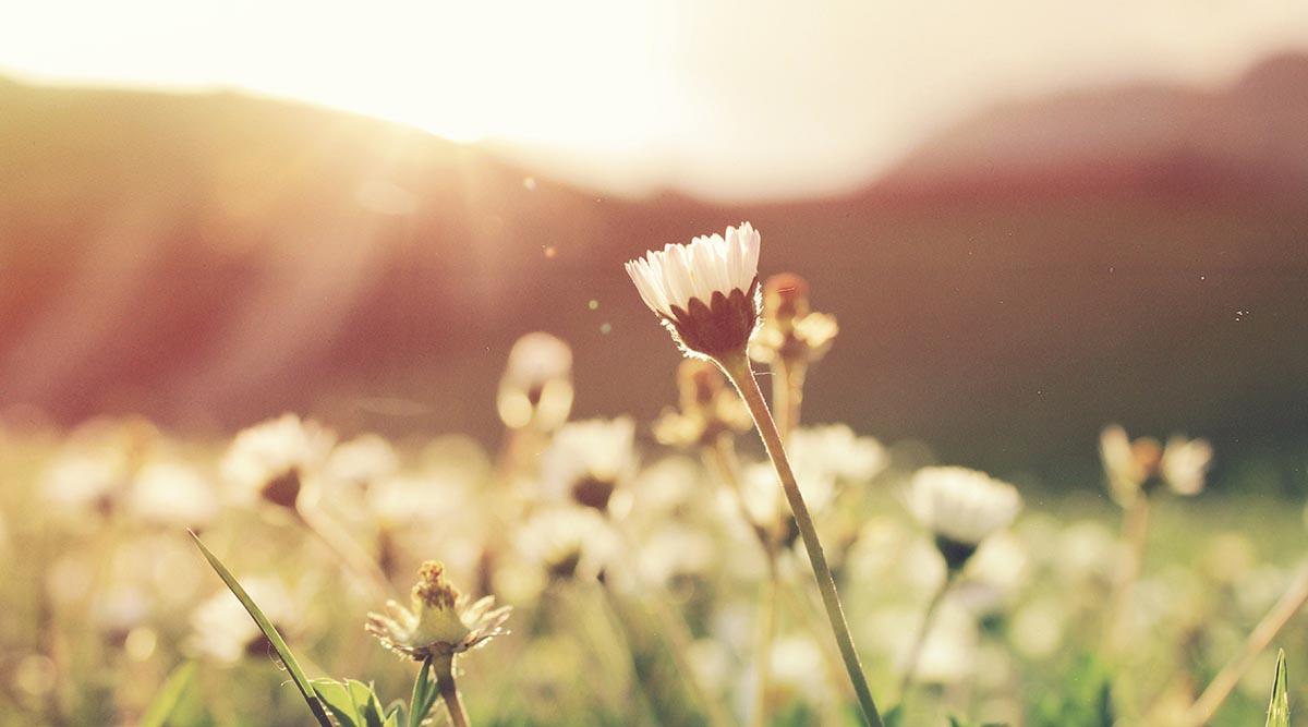 5 claves para nuestro crecimiento personal