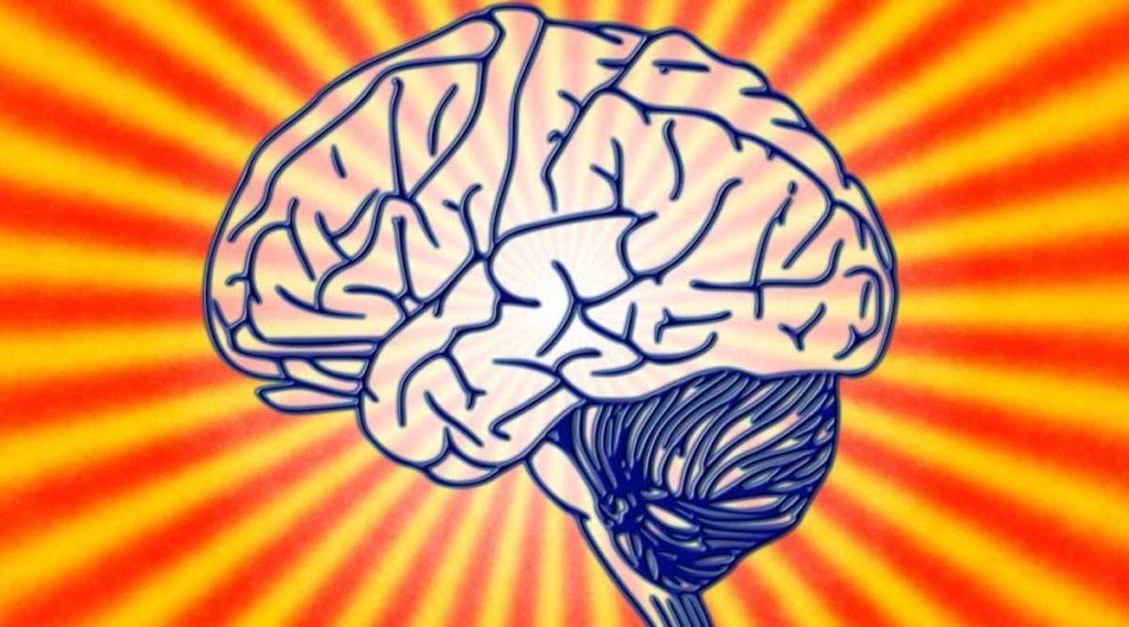 7 creencias erróneas sobre el cerebro humano