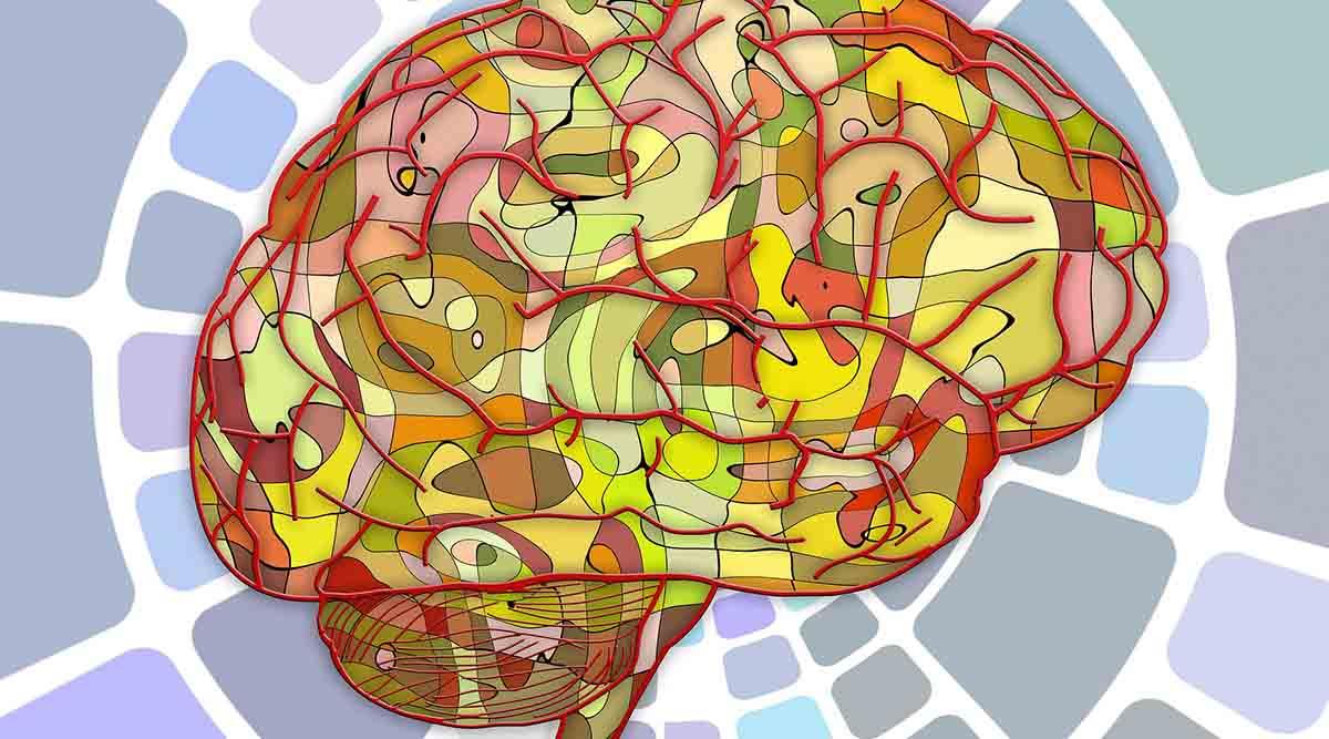 Qué es la psicología y por qué nos debería interesar