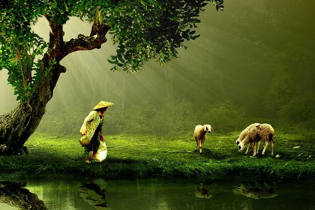 contacto con la naturaleza