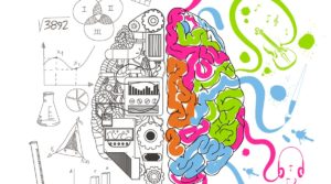 Lateralidad cerebral: ¿Existe un hemisferio cerebral dominante?